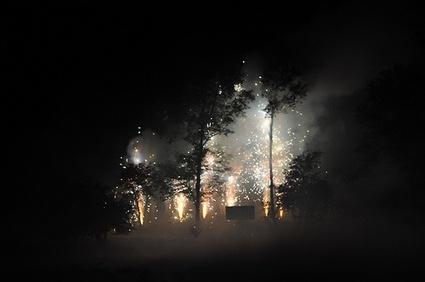 Fireworksintrees.jpg