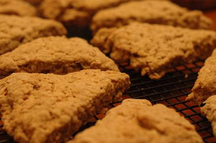 Cinnamon Oatmeal Scones 1