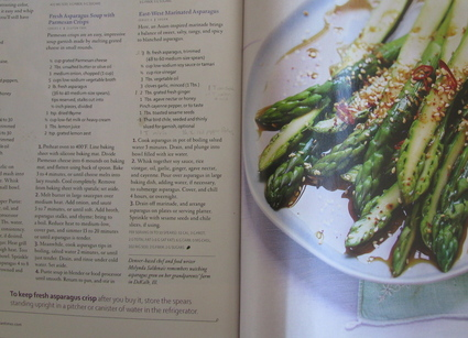 How NOT to Cook Fresh Asparagus 4