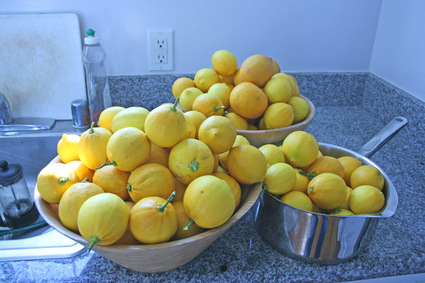 When life gives you Meyer lemons... 2